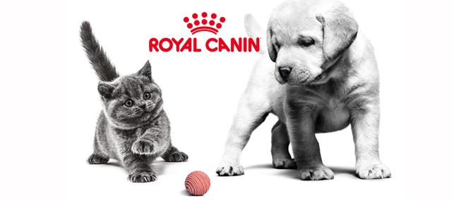 ROYAL CANIN suņu barība