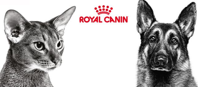 ROYAL CANIN kaķu barība